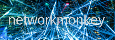 networkmonkey.co